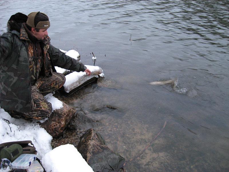 где ловить рыбу в северске