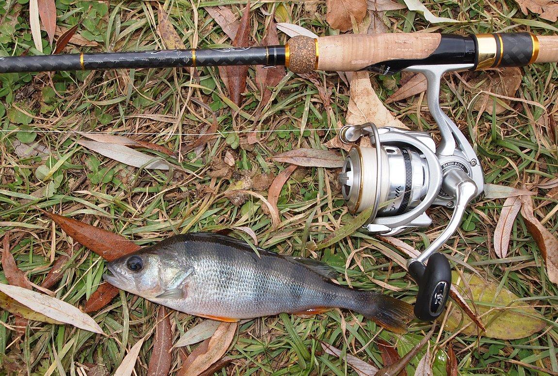 Длина удилища играет важную роль при ловле на отводной