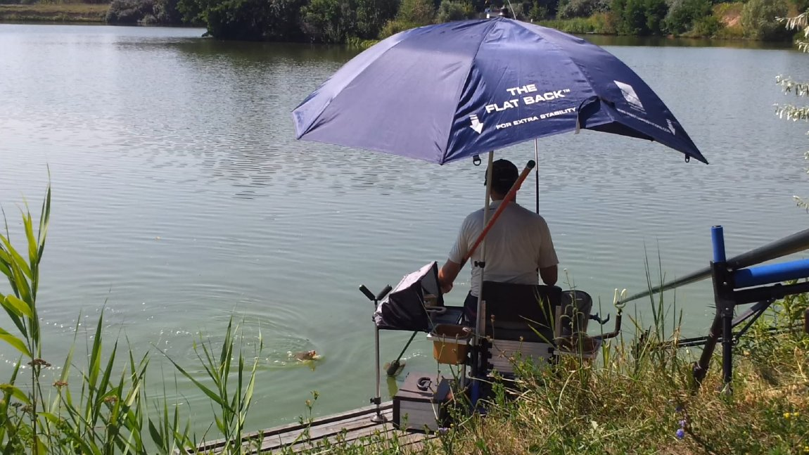 ловля карпа на удочку на озере